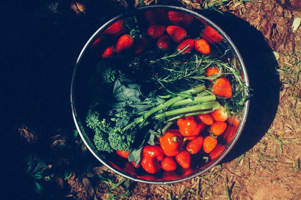 Питание — дело привычки
